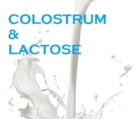 Colostrum & Lactose